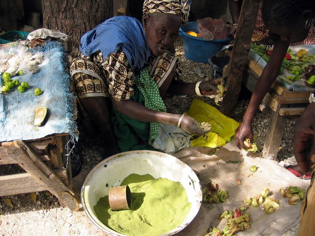 Baobab prášok domaca výroba
