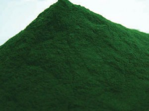 chlorella-powder bio